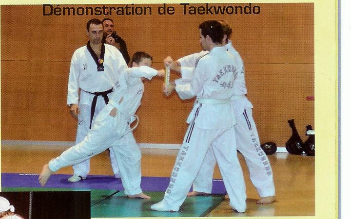 Demo de taekwondo 3